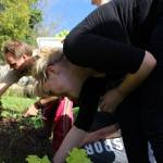 Hands on the Vegetable Garden